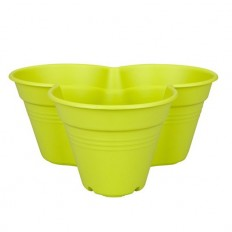 Ghiveci Flori Green Basics Growset